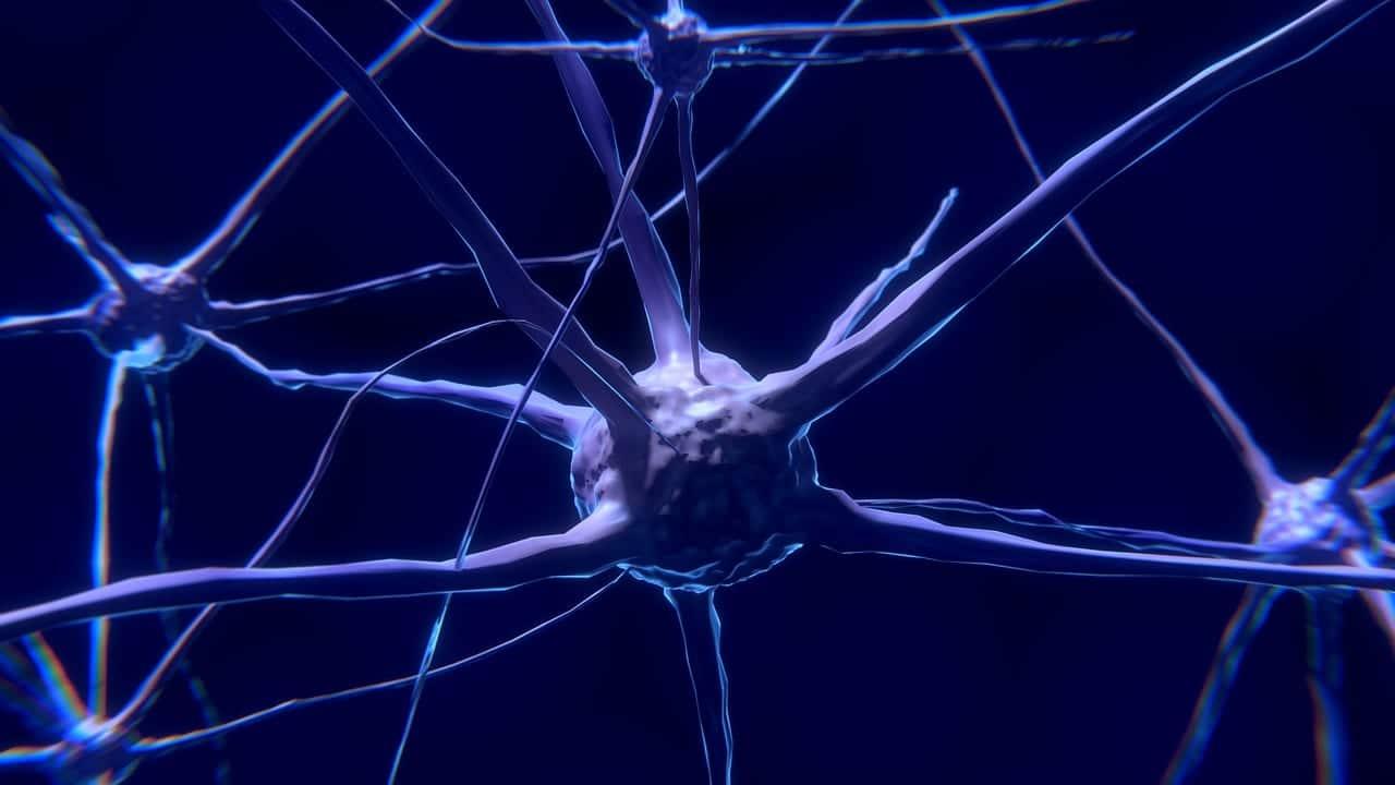 Efecto de las drogas en el cerebro