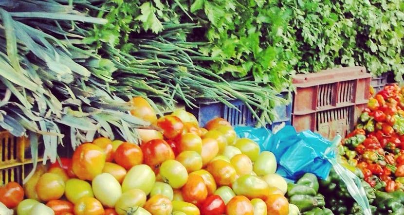 Plantas comestibles, hortalizas y frutas