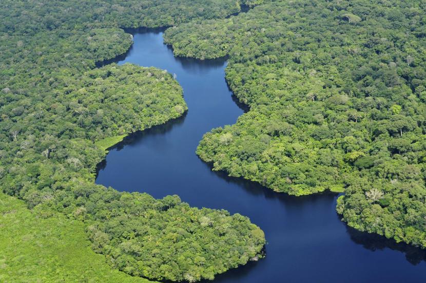 el río más largo es el amazonas